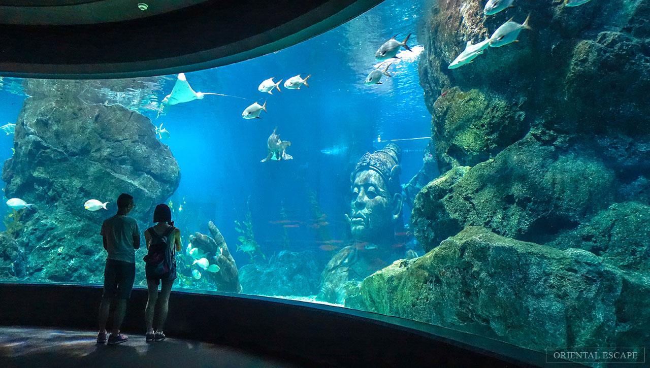 Sea Life Bangkok Ocean World At Siam Paragon Madame Tussauds Tiket Singapore