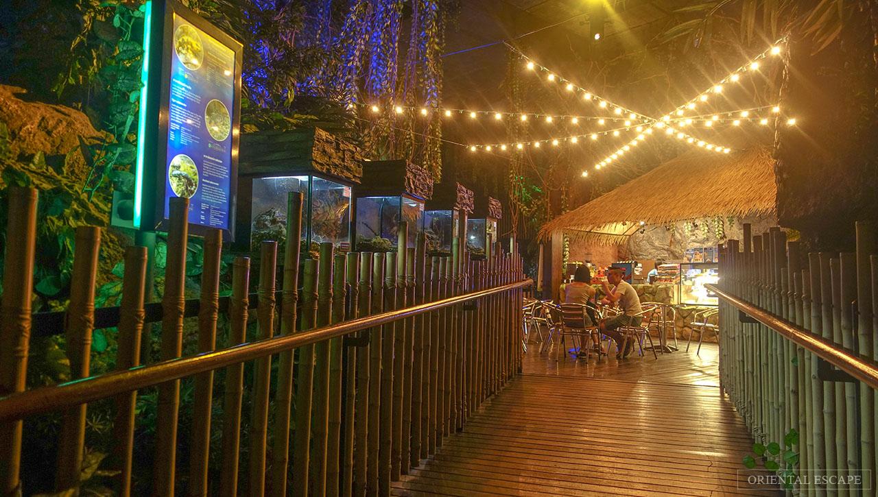 Sea Life Bangkok Ocean World At Siam Paragon Madame Tussauds Thailand Et Ticket Aquarium Only Adult